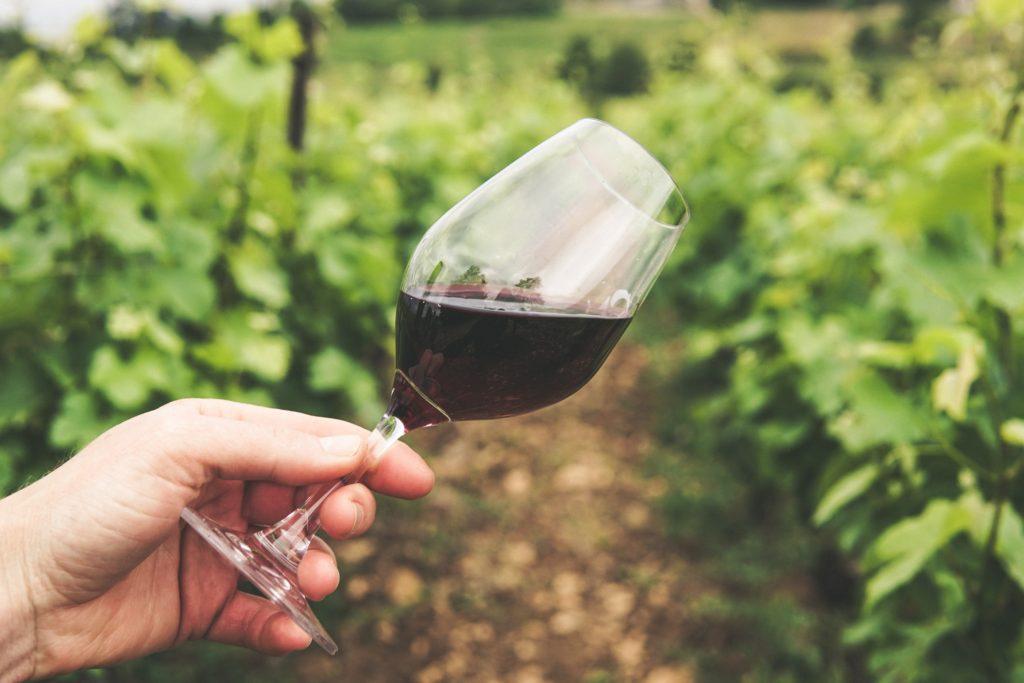 ワインの美味しく飲める適温の判断は「香り」!
