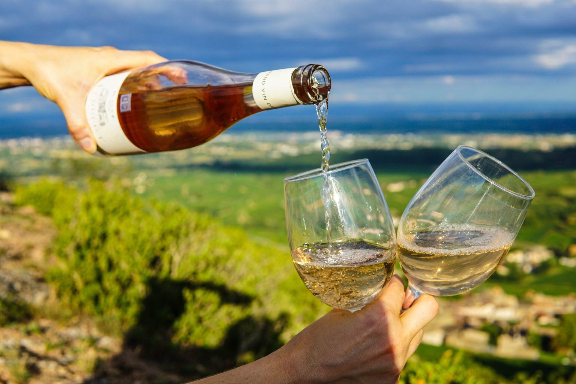 自宅でワインを飲むときに持っておきたいアイテムはこの3つ!【ワイン初心者向け】