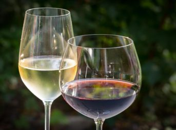 日本の季節に合わせたワインの選び方のポイントとは?意外と便利な豆知識をご紹介!