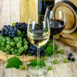 ワインの種類ってどんなのがあるの?【初心者のためのワイン入門編】